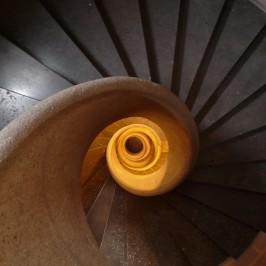Découvrez notre guide pour trouver la meilleure essence de bois pour votre escalier